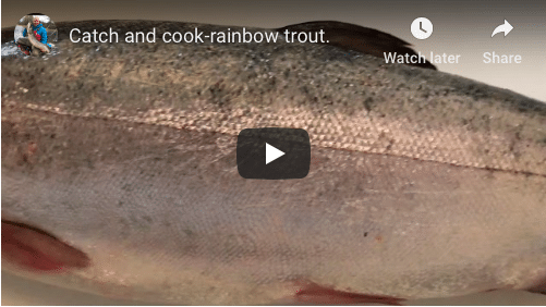 Catch and cook-Rainbow trout.