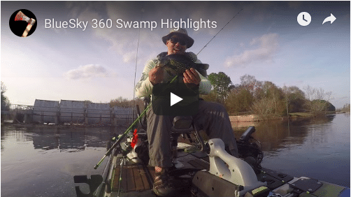 Bluesky 360 Swamp Highlights