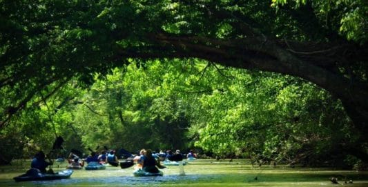 Growing Your Local Kayaking Community