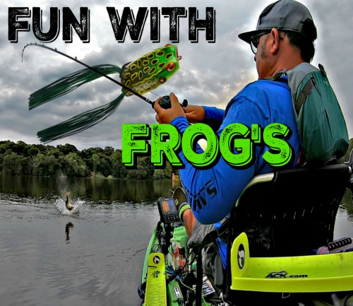 Fun with Frogs
