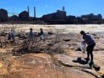Chattahoochee Riverside Cleanup