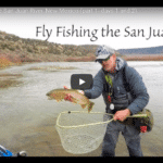 Fly Fishing the San Juan River in New Mexico