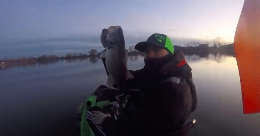 50 Fish Day