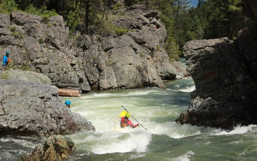 Skookumchuck Creek | Whitewater Kayaking