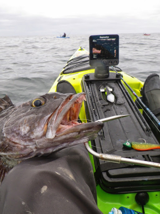 Tips for a successful Bass Fishing Activity
