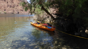 A drag bag floats behind the kayaks
