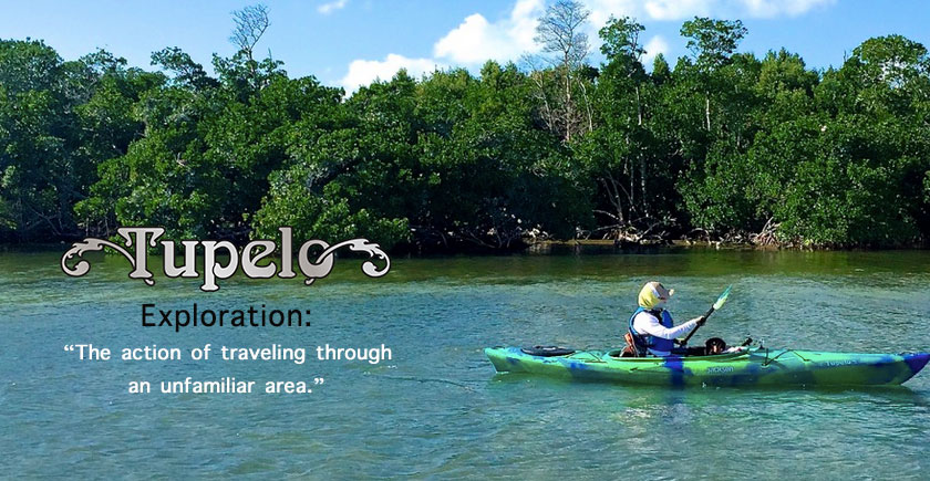 Exploration by way of the Jackson Kayak Tupelo