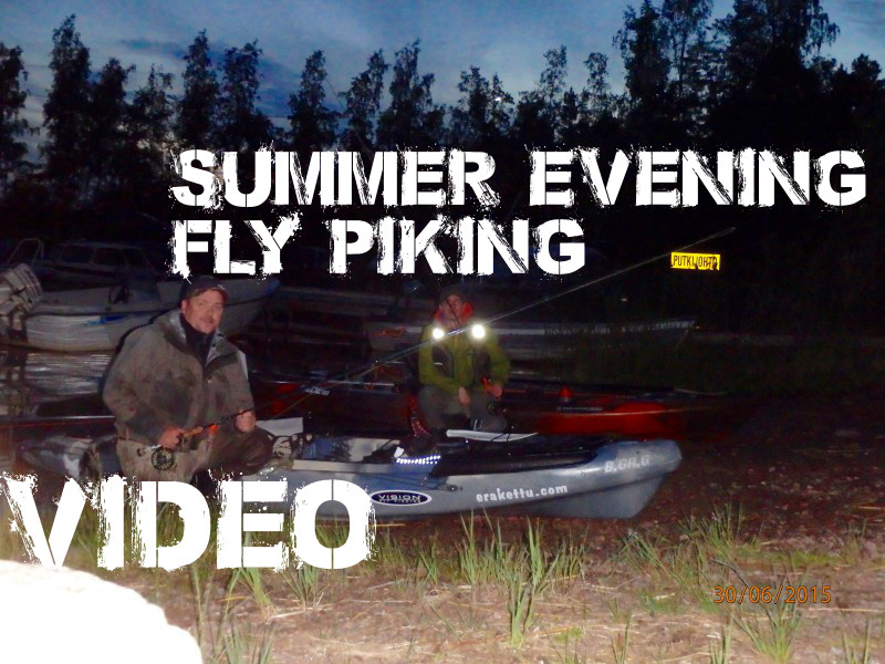 VIDEO: Fly fishing for pike June 29 2015
