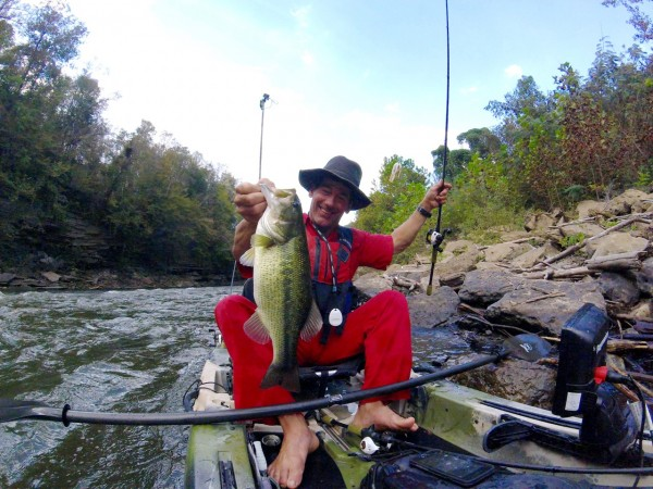 Sexy Shad Strike King Swim Jig, Menace Trailer, on the Caney Fork River