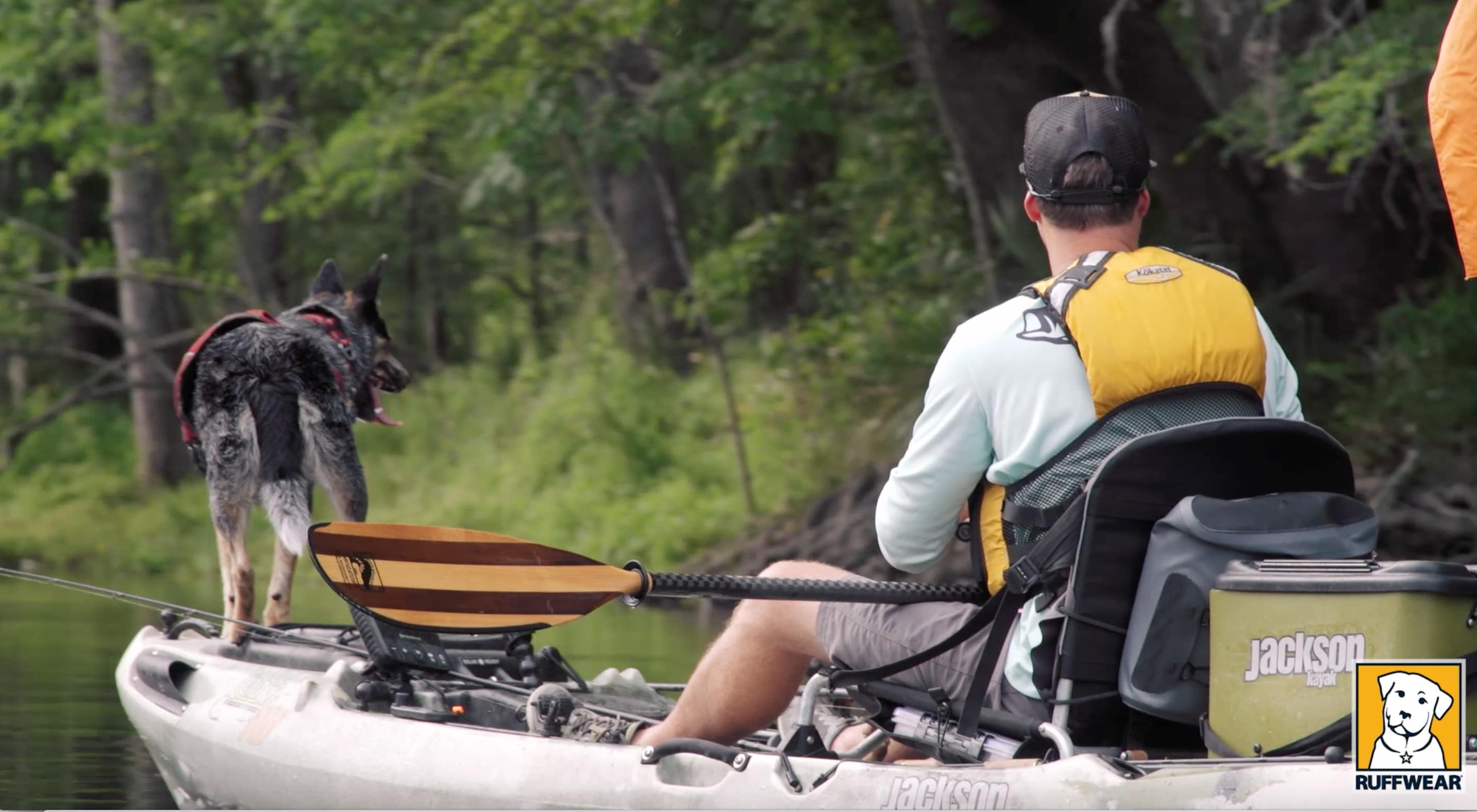 TIP VIDEO: Kayak fishing with your dog!