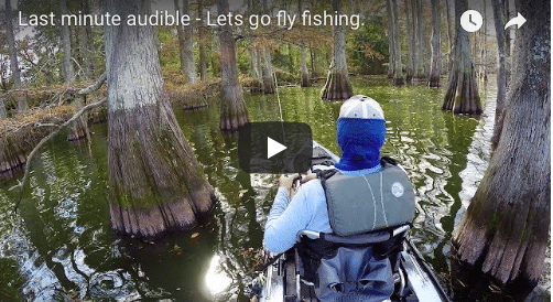 Change of plans – when bass fishing gets boring – VIDEO