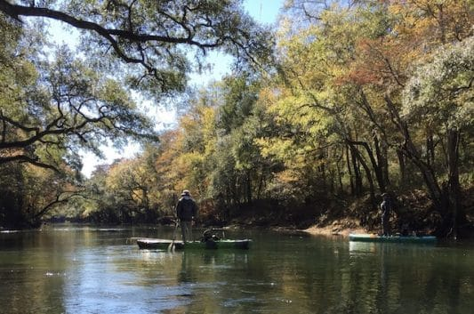Chipola River: In Search of Shoal Bass