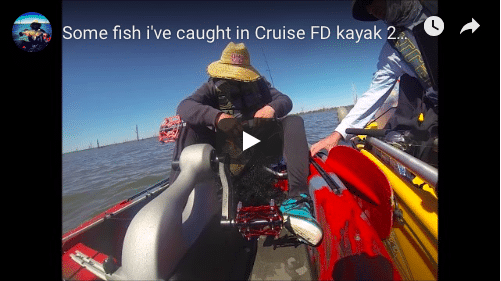 Some fish I've caught in Cruise FD kayak 2018
