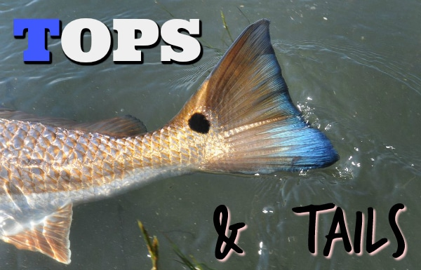 Tops and Tails