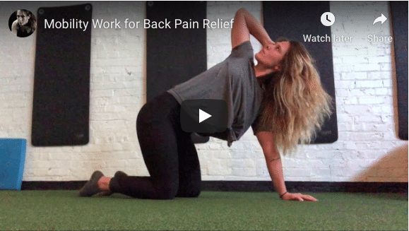 FALL RELEASES ARE HERE!! But what does that mean for your back?