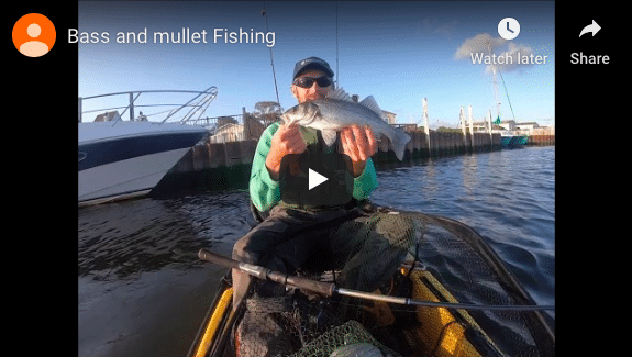Bass and Mullet Fishing