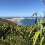 New Zealand Travel Hacks