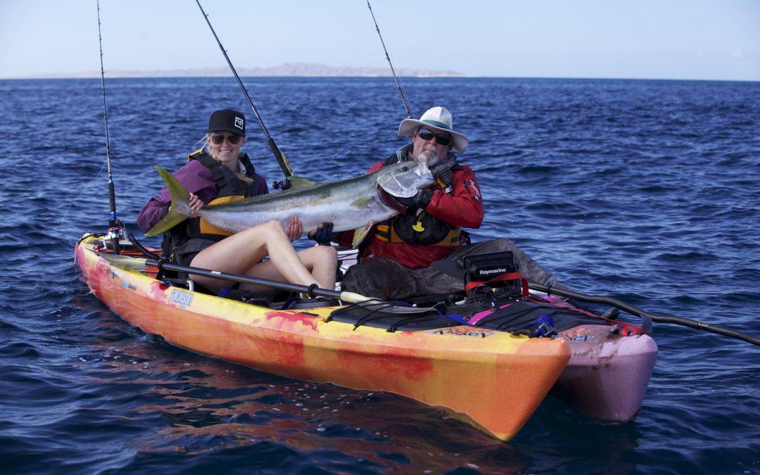 Kayak Fishing for Big Yellowtail at Baja Cedros Island Pt 2