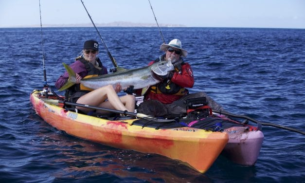 Kayak Fishing for Big Yellowtail at Baja Cedros Island Pt 2