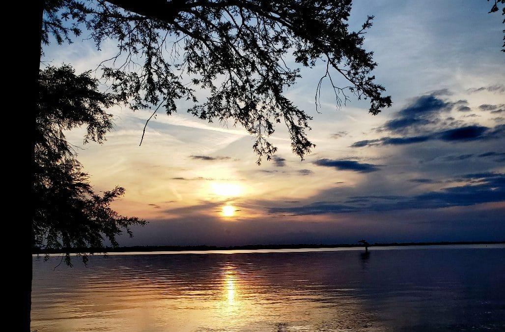 Destination: Reelfoot Lake