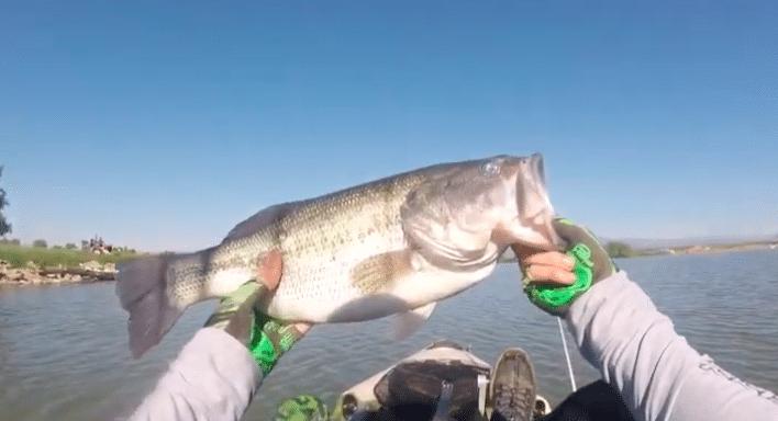 Private Pond = Big Bass!
